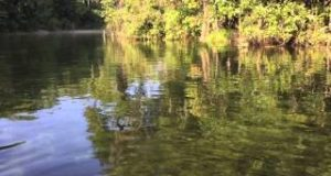 Life-is-good-SUP-paddle-boarding-on-the-Rainbow-River-in-Dunnellon-Florida