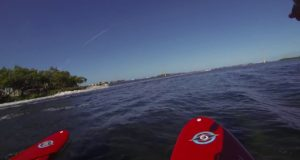 Snorkeling-and-Stand-Up-Paddle-Boarding-Key-West-Florida