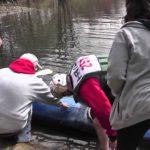 hockanun river canoe and kayak race story
