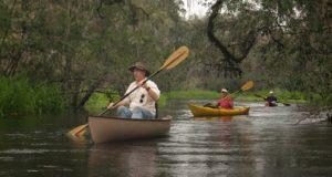 paddling-the-ichetucknee-kok-photo-2