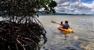 pageheader-paddling